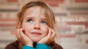 Human Life – Is There A Purpose