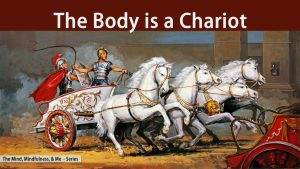 The Body Is A Chariot